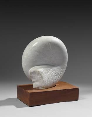 Pierre Dimitrienko, coquillage, marbre
