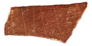 Découverte de l'oeuvre la plus ancienne au monde