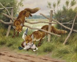 Georges Frédéric Rotig, renards chassant le colvert, aquarelle