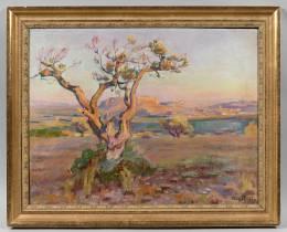 Henri Pailler, le vieil olivier, tableau