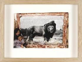 Peter Beard, lion photographie, vente aux enchères