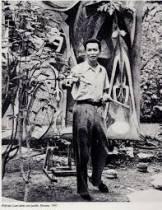 Wilfredo Lam, cote et estimation sur le marché de l'art
