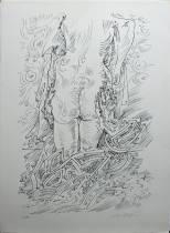 André Masson, série érotique, lithographie