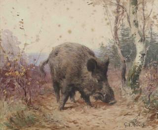 Georges Rotig, sanglier dans le sous bois, aquarelle