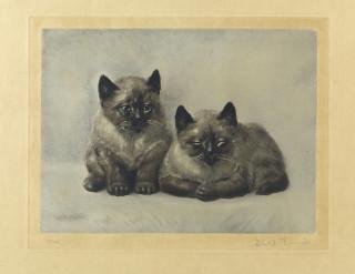 Toshio Bando, les chatons, estampe