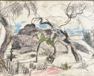 Willy Eisenschitz, paysage aux oliviers, dessin