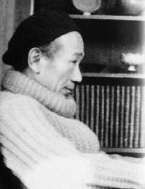Lin Feng Mian